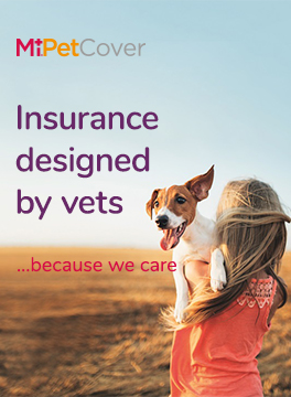 MiPet Cover banner