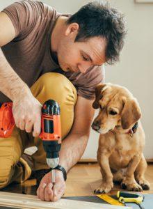 Refurbishments at vets